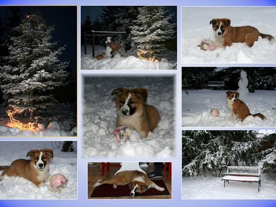 Nikolaus und erster Schnee