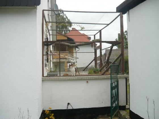 Blick vom Gehege in die Terrasse